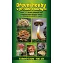 Dřevní houby v přírodě a kuchyni (autor Socha Radomír, Vít Aleš)
